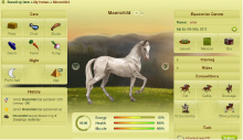 Game Screenshot - Howrse